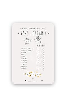 """Questionnaire Babyshower """"Papa et Maman Oiseau"""""""