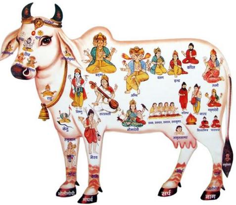 Diwali festivities - Day 1 - Vagh Baras