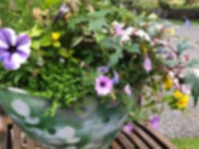 花の画像.jpeg