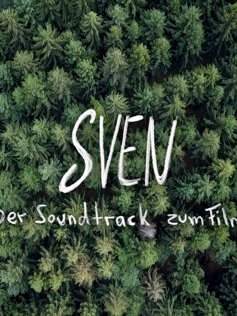 """Für unseren Film """"Sven"""" haben wir gemeinsam mit Paul Oster einen eigenen Soundtrack sammt der Singel """"Anyone but you"""" geschrieben und aufgenommen."""