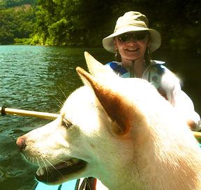 Kayak with dog. Animal communicator Phee Nugent kayak Japan