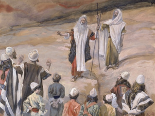 Behaalotcha- weekly Torah portion