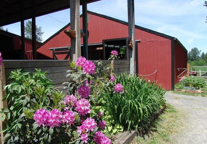 small-barn1 (1).jpg