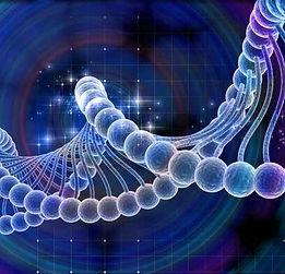 cancer-genomics-xgen206 (1).jpg