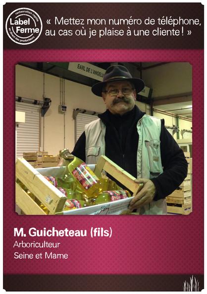 M. Guicheteau