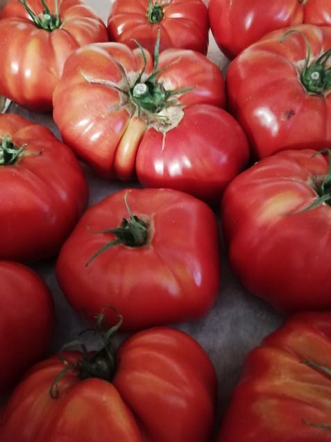 Tomates de Seine-et-Marne