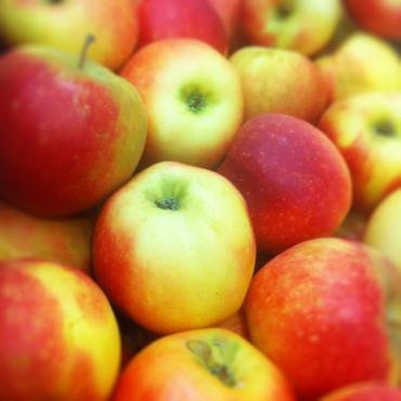 Pommes de Seine-et-Marne