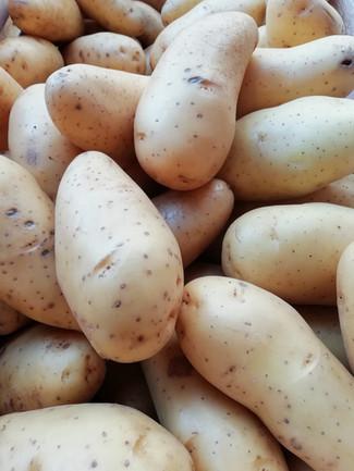 Pommes de terre des Yvelines