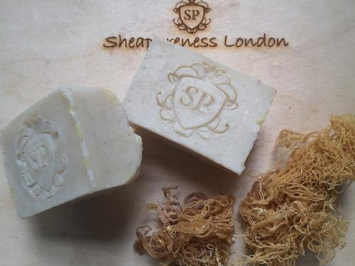 Rapture Rhassoul clay & seamoss soap