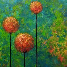 Orange Allium