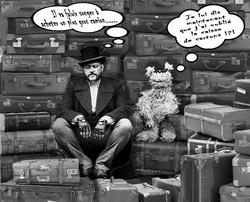 archibobi valises cartons