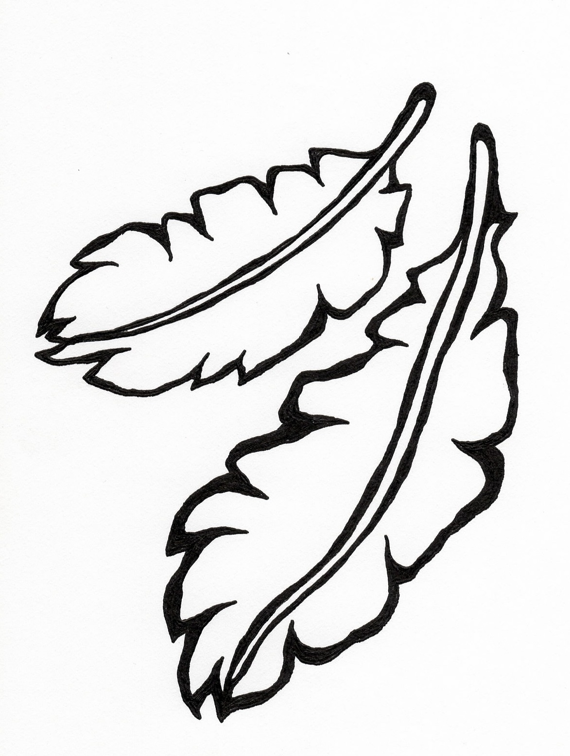 Feathers tattoo design