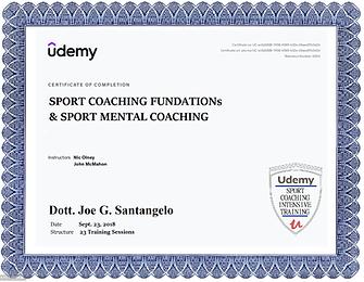 2018 UDEMY University  Sport Coaching & Sport Mental Coaching.png