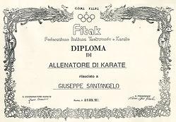 1991 FILPJK-CONI Allenatore di Karate (I