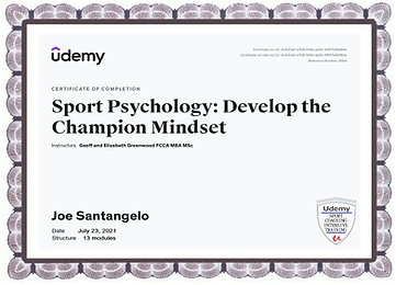 UDEMY - JULY-23 2021 CHAMPIONS' Mindset Course.png