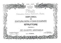 1994 IStruttore FILPJK CONI - 4° Dan KAR