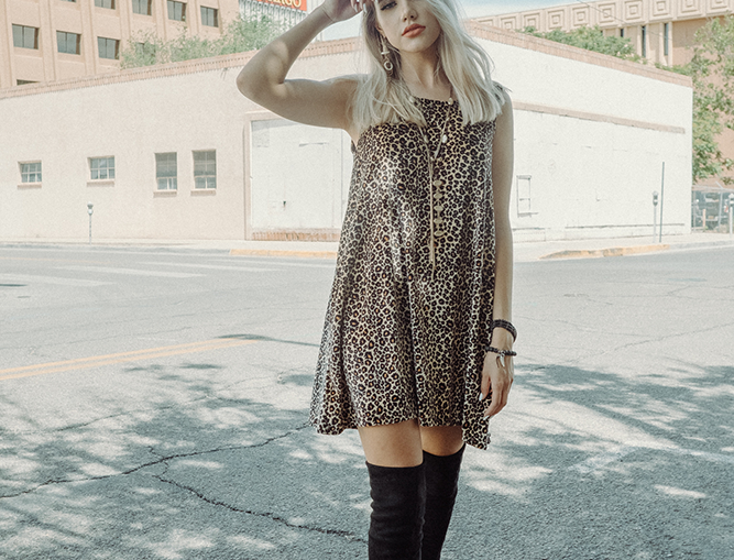 Chloe Dress - Feline Good