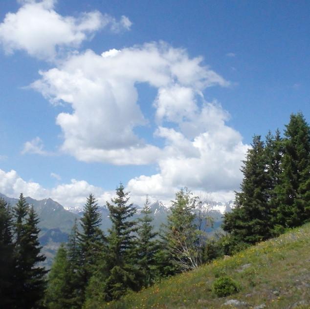 Alpes 2018 -  07-07 - 06.JPG