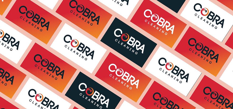 Cobra-Portfolio2.jpg