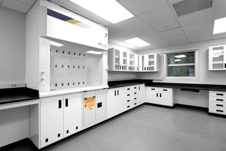 Laboratory work area with fume hood and flammable material storage