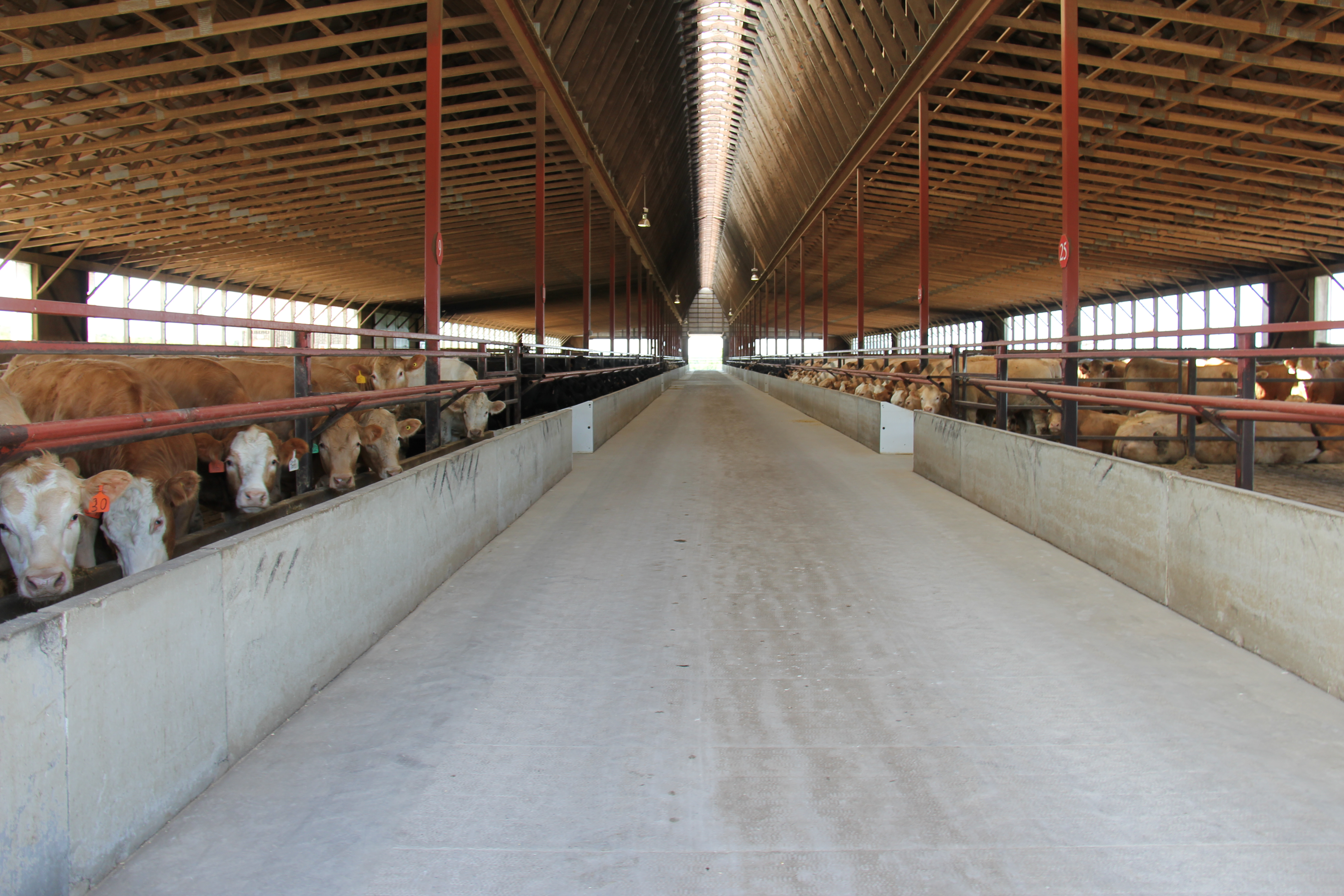 The inside of the barn