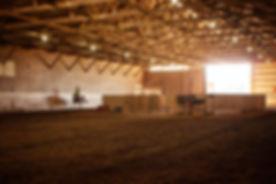 Arena #12.jpg