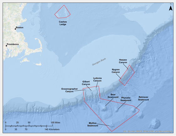 Cashes Ledge and the Northeast Seamounts and Canyons
