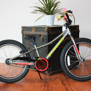 """Specialized Riprock 20"""""""