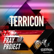 Terricon