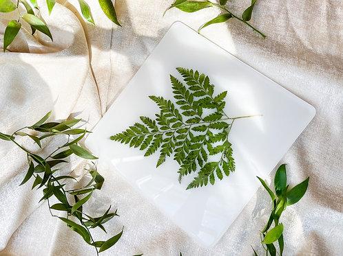 Pressed botanical in white acrylic tray