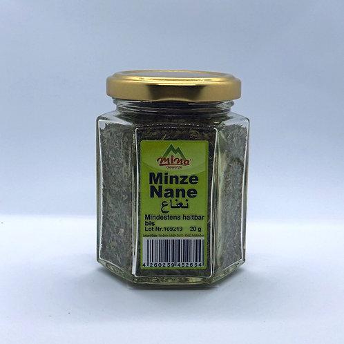 Minze / Nane