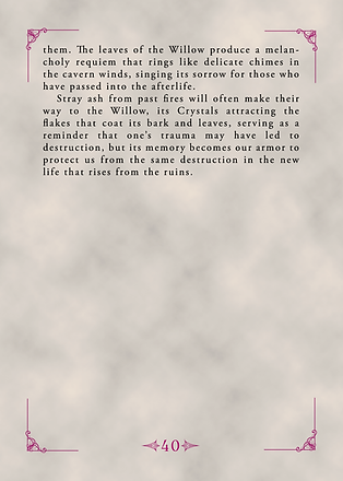 Page 44 (40).png