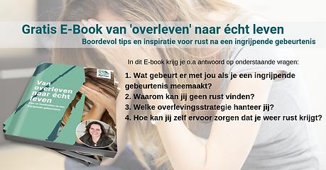 ebook vragen.png