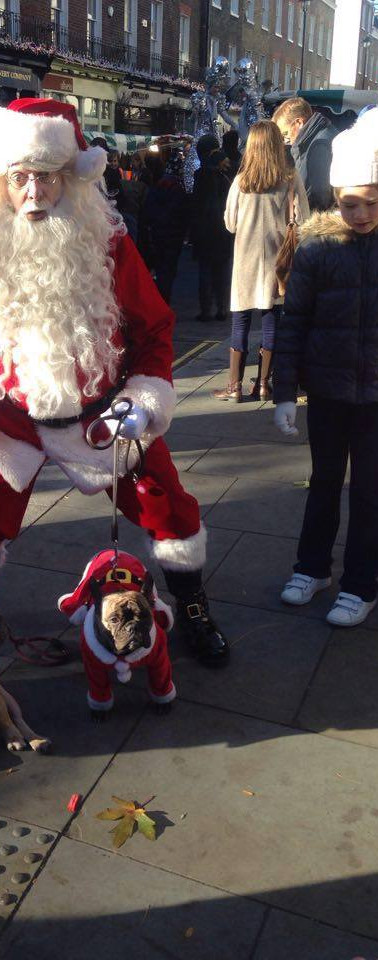 Top Santa Claus is dog-friendly!