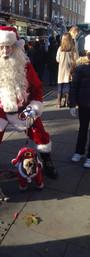 Top Santa Claus is dog-friendly!