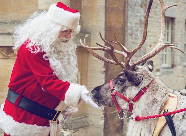 Santa with his reindeer.jpg