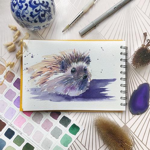 Purple Hedgehog