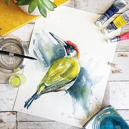 Animals and Birds