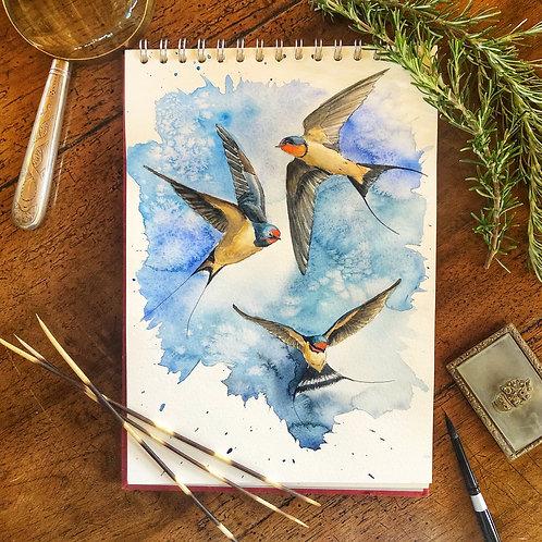 Three Swallows