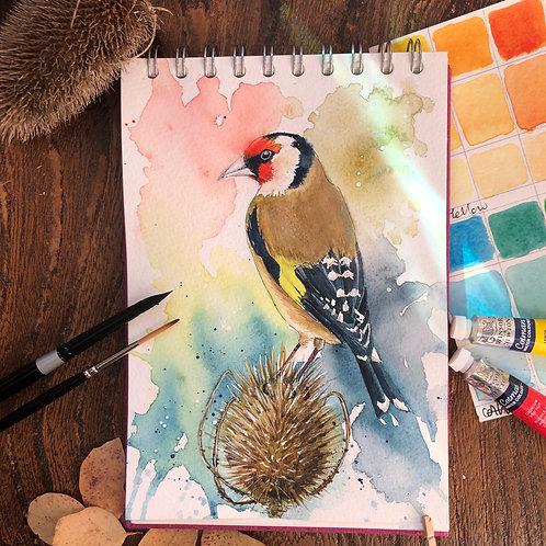 Goldfinch on a Teasle