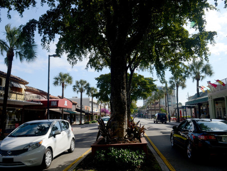Less Safety for the Las Olas Mobility Improvement Project