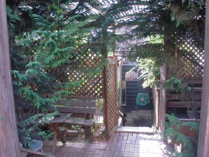 The back patio of Valley Tavern surrounded by trees and greenery