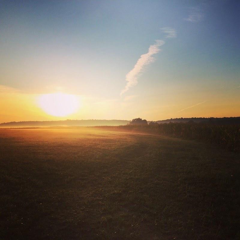 The sun rises over a field at Clarion River Organics farm