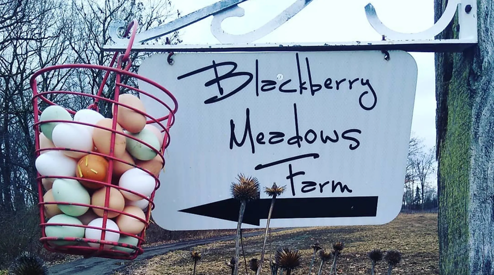 an egg CSA share hangs from a sign at Blackberry Meadows Farm