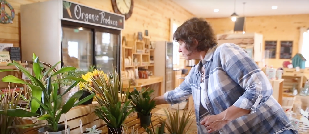 Jodi Danyo arranges plants in the Cherry Valley Farm Market and Cafe