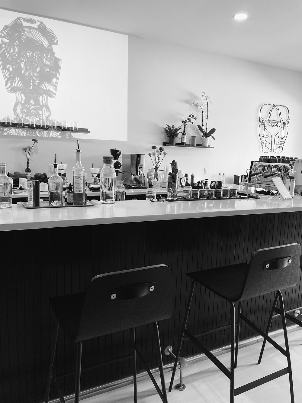 The bar at Tonic Coffee in Lawrenceville Pittsburgh