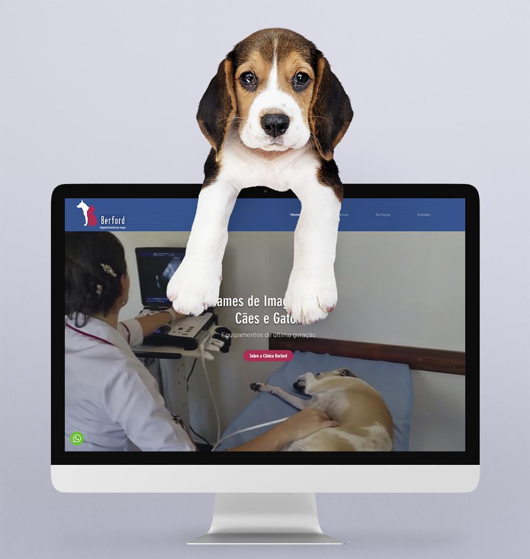 Berford-Exames de Imagem Cães/Gatos