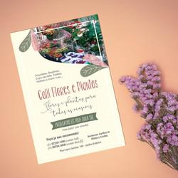 Calil Flores e Plantas