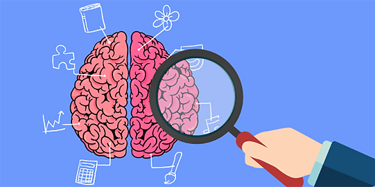 neurociencia-e-a-primeira-infancia.png