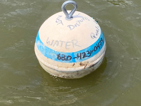 Buoys on the Fox River mark water quality testing sites